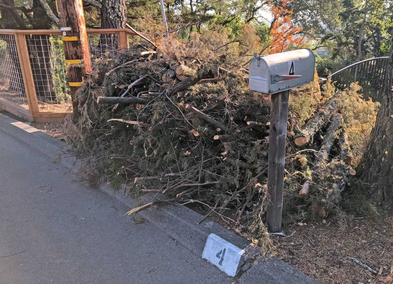 Sleepy Hollow: Free Curbside Pick-Up Chipper Day.  Last Chance for 2018!