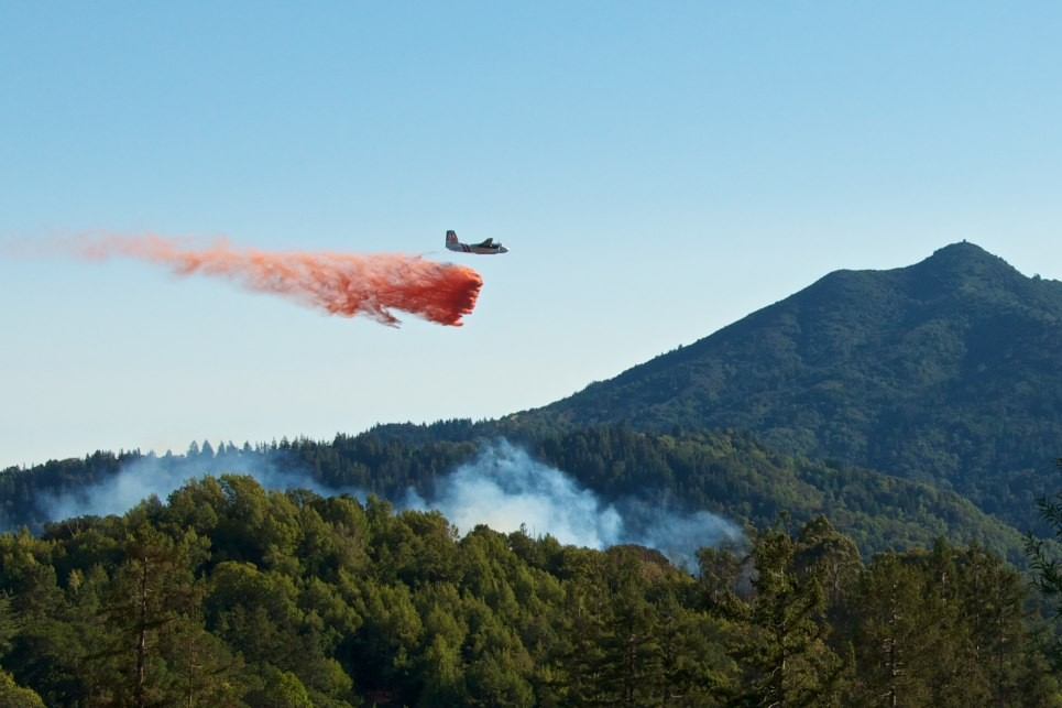 San Anselmo Vegetation Fire at Memorial Park